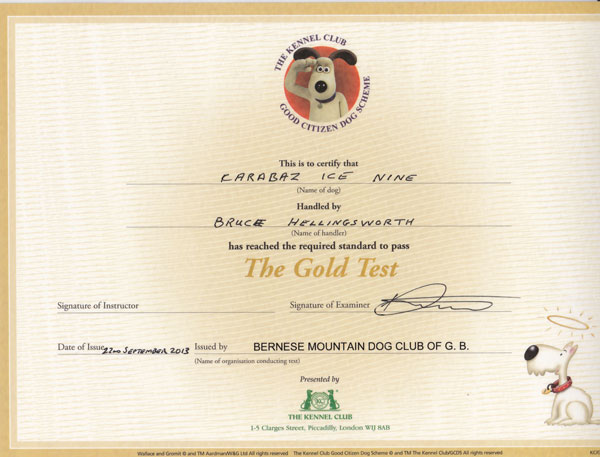 Tolly's Gold Good Citizen Certificate